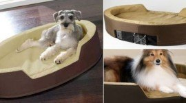 Regalos de navidad para mascotas de lujo