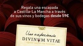 Regala Divinum Viate, las mejores rutas enológicas en Castilla – La Mancha