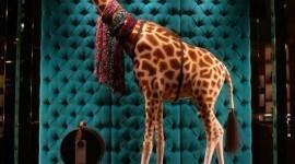 Louis Vuitton, arte en la Quinta Avenida
