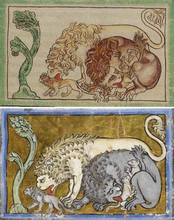 The Northumberland Bestiary